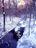 Central Illinois Winter Forest Stream Royalty Free Stock Photography