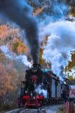 Central Lake Baikal Railway Royalty Free Stock Images