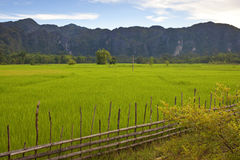 Central Laos Royalty Free Stock Photo