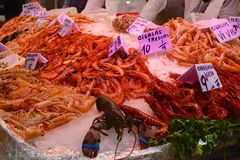 Central Market, Valencia, Spain. Shellfish counter Royalty Free Stock Photography