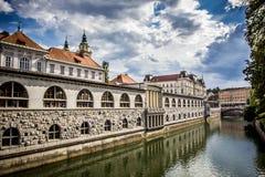 Central marknad i ljubljana som förbiser kanalen Arkivbilder