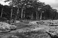 Central monochrome noir et blanc le Texas de rivière de Frio image libre de droits