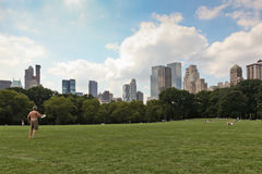 central ny park york Royaltyfria Bilder