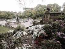 central ny park york Royaltyfria Foton