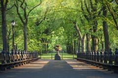 central ny park york Royaltyfri Fotografi