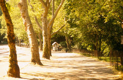 central nycpark Arkivbilder