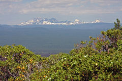 Central Oregon Cascades framed by Manzanita Royalty Free Stock Image