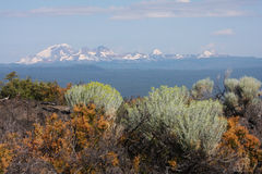 Central Oregon Cascades with Rabbitbrush. Among the most prominent peaks in the Central Oregon Cascades are, from right to left, (north to south,) North Sister ( Stock Image