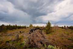 Central Oregon Rain Storm and Desert Royalty Free Stock Photography
