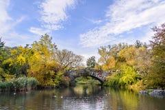 Central park湖和叶子 免版税库存图片