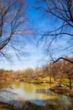 Central Park湖 免版税库存照片