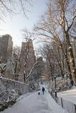 Central Park à l'hiver Photographie stock libre de droits