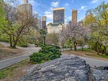 Central Park, άνοιξη πόλεων της Νέας Υόρκης Στοκ εικόνες με δικαίωμα ελεύθερης χρήσης