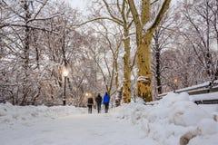 Central Park μετά από το χιόνι Strom Linus Στοκ εικόνα με δικαίωμα ελεύθερης χρήσης