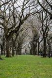 Central Park, Νέα Υόρκη.   Στοκ φωτογραφίες με δικαίωμα ελεύθερης χρήσης
