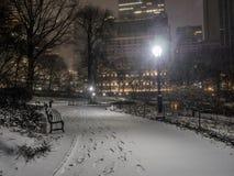 Central Park, νύχτα πόλεων της Νέας Υόρκης Στοκ Εικόνα
