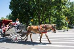 Central Park στην πόλη NYC της Νέας Υόρκης Στοκ Εικόνες