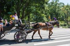 Central Park στην πόλη NYC της Νέας Υόρκης Στοκ Εικόνα