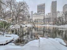 Central Park, χιονοθύελλα πόλεων της Νέας Υόρκης στοκ εικόνα με δικαίωμα ελεύθερης χρήσης
