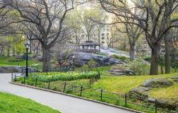 Central Park, весна Нью-Йорка Стоковое Фото