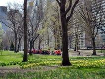 Central Park весной, NYC, NY, США Стоковые Фото