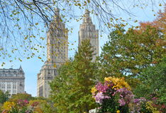 Central Park в осени manhattan новые США york Стоковая Фотография