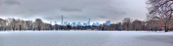 Central Park в снеге, Манхаттане, Нью-Йорке Стоковое Изображение RF