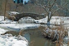 Central Park Манхаттан Нью-Йорк США Стоковые Изображения RF