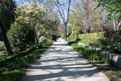 Central Park Мадрида, Испании Стоковое Изображение RF