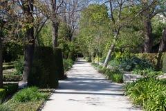 Central Park Мадрида, Испании Стоковая Фотография RF