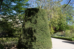 Central Park Мадрида, Испании Стоковое Фото