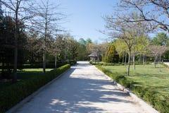 Central Park Мадрида, Испании Стоковые Фотографии RF