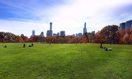Central Park на солнечном дне, Нью-Йорк Стоковое фото RF