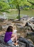 Central Park Нью-Йорка Стоковая Фотография RF