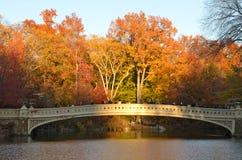 Central Park 15-ого ноября 2014 в Манхаттане, Нью-Йорке, США Стоковое Фото