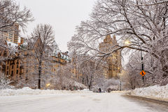 Central Park после снега Strom Linus Стоковая Фотография
