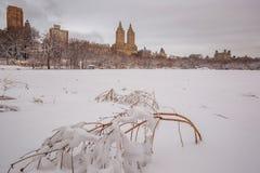 Central Park после снега Strom Linus Стоковое Изображение RF