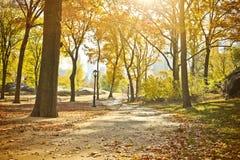 Central Park сценарный в осени, Нью-Йорк Стоковая Фотография