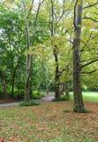 Central Park - след 1 Стоковая Фотография
