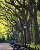 Central Park Imagem de Stock Royalty Free