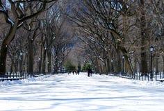 Central Park fotos de stock royalty free