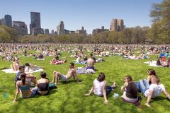 Central Park Royalty Free Stock Image