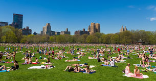 Central Park Royalty Free Stock Images