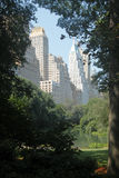 Central Park Fotografia de Stock Royalty Free