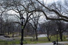 Central Park Foto de Stock Royalty Free