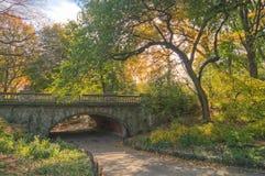 central park Zdjęcia Royalty Free