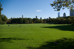 Central Park Fotos de Stock
