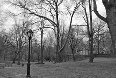 Central Park Fotos de archivo