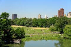 Central Park Fotografia de Stock