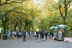 Central Park Fotografia Stock Libera da Diritti
